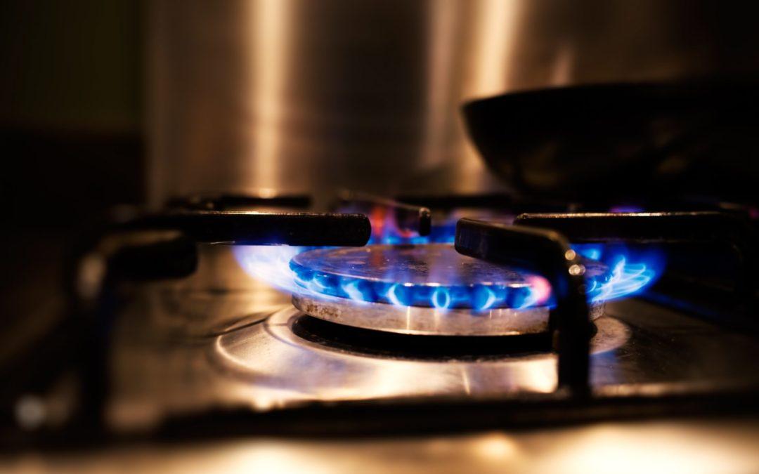 Medio ambiente no es lastimado con el consumo de Gas LP